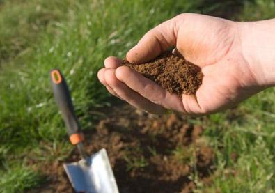 ziemia-gleba